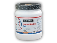 Instant Amino Fair Power 400g
