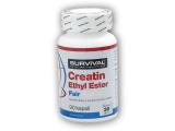 Creatin Ethyl Ester Fair Power 90 kapslí