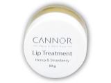 Balzám na rty lip treatment 10g