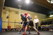Mezinárodní turnaj v boxu 2014